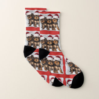 Christmas Yorkshire terriers puppy dog socks 1