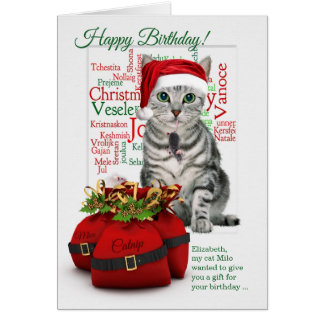 Christmastime Birthday Custom Tabby Cat Card