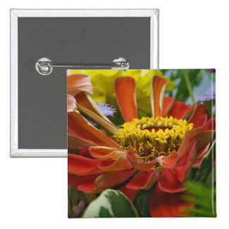 Chrysanthemum flower 2 inch square button