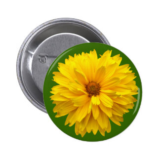 Chrysanthemum - Green 2 Inch Round Button