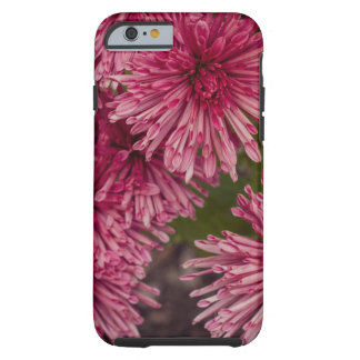 Chrysanthemum Tough iPhone 6 Case