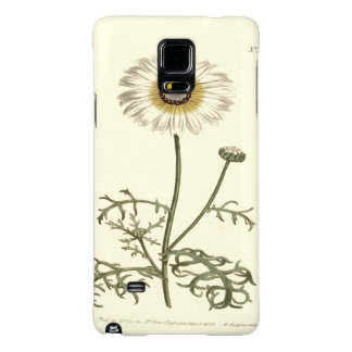 Chrysanthemum Tricolor Yellow Illustration