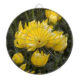 chrysanthemums in the garden dartboards