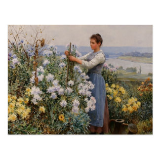Chrysanthemums Postcard by Daniel Ridgway Knight