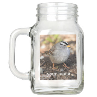 Chubby White-Crowned Sparrow in the Winter Sun Mason Jar