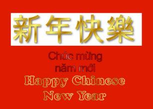 chuc mung nam moi vietnamese new year lunar year holiday card