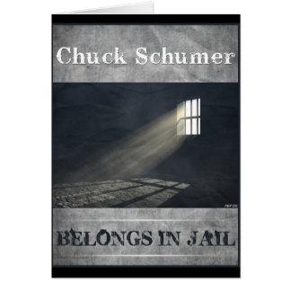 Chuck Schumer Greeting Card
