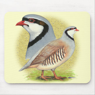 Chukar Partridge Combo Mouse Pad