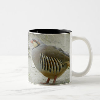 chukar Two-Tone coffee mug