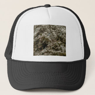 churned rocks trucker hat