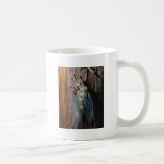 Cicada dries his wings coffee mug