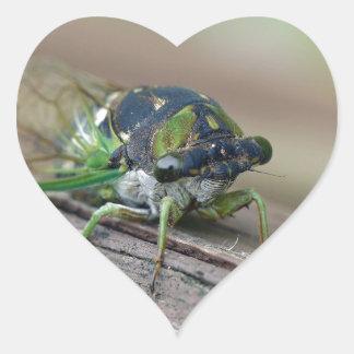 Cicada Heart Sticker