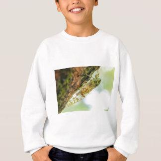 Cicada insect sweatshirt