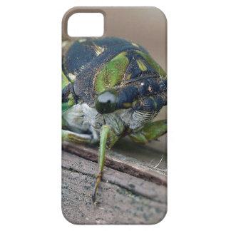 Cicada iPhone 5 Cases