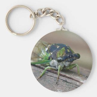 Cicada Keychain