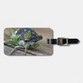 Cicada Luggage Tag