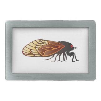 Cicada - Magicicada - Emergence of Amazing Insect Belt Buckles