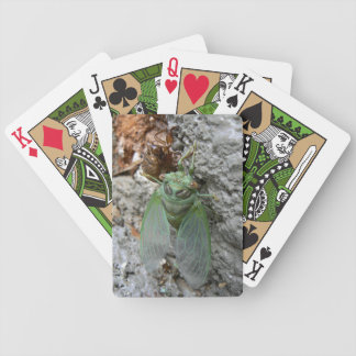 Cicada on the Wall Bicycle Playing Cards