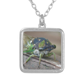 Cicada Silver Plated Necklace