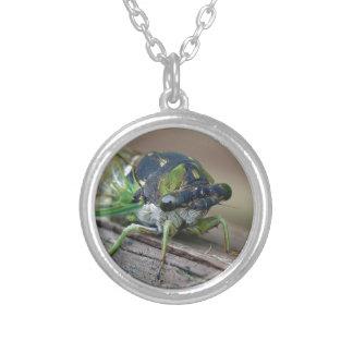 Cicada Silver Plated Necklace
