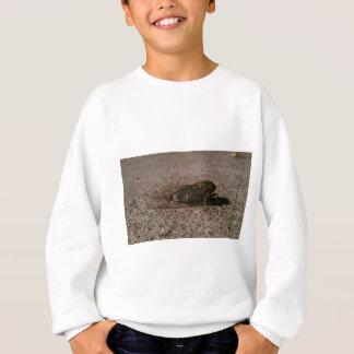Cicada Sweatshirt