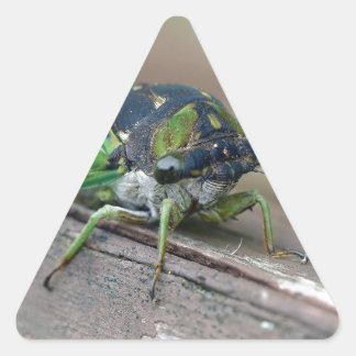 Cicada Triangle Sticker