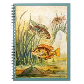 Cichlid Fish Spiral Notebooks