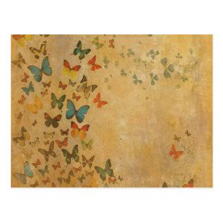 Ciel doré carte postale