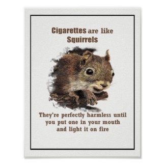 Cigarettes are like Squirrels Motivational Quote Poster