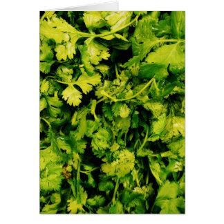 Cilantro / Coriander Leaves Card