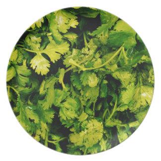 Cilantro / Coriander Leaves Dinner Plates