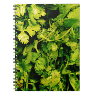 Cilantro / Coriander Leaves Notebook
