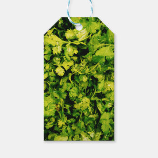 Cilantro / Coriander Leaves Pack Of Gift Tags