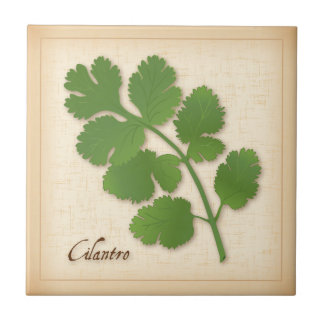 Cilantro Herb Tile