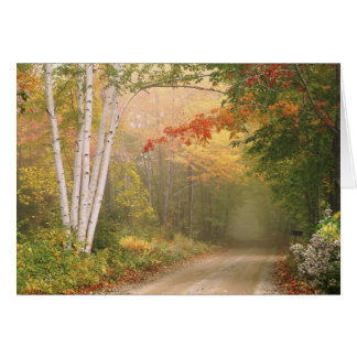 Cilley Hill Road Note Card