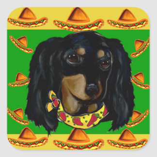Cinco de Mayo Long Haired Black  Doxie Square Sticker