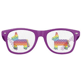 Cinco de Mayo Rainbow Fiesta Birthday Party Pride Sunglasses