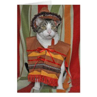 Cinco de Mayo Tabby Cat Card