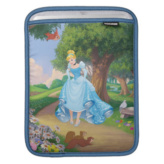 Cinderella | Glass Slippers iPad Sleeve