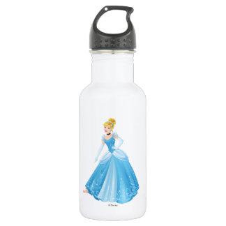 Cinderella | Missing Slipper 532 Ml Water Bottle