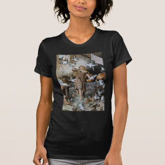 cinderella-pictures-5 shirts