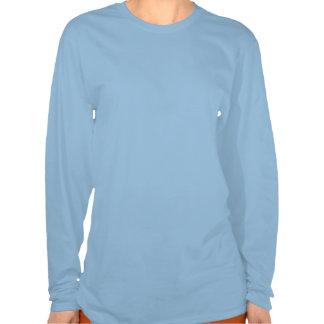 Cinderella Slipper on Teal Orange Pillow Shirt