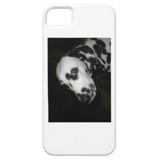 Cindy - Sunset iPhone 5 Cover