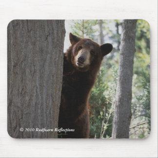Cinnamon bear mouse pad
