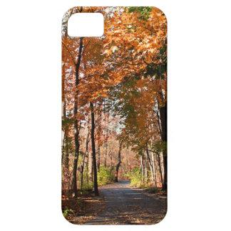 Cinnamon Booze iPhone 5 Cases