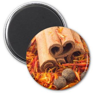 Cinnamon, peppercorn and saffron close-up magnet