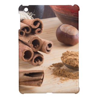 Cinnamon sticks and powder iPad mini cases