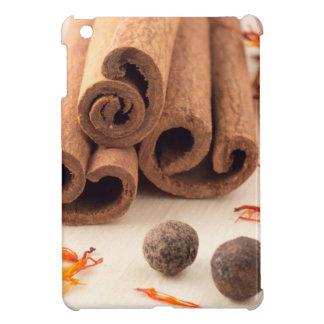 Cinnamon sticks, aromatic saffron and pimento iPad mini cover