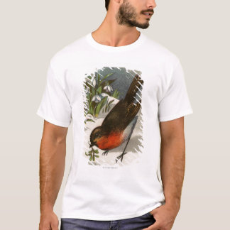 Circa 1871: A robin, with mistletoe in its beak T-Shirt