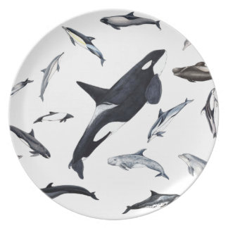 Circle of dolphins plate
